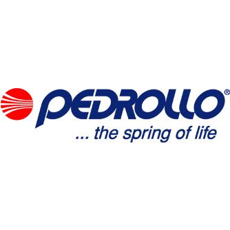 Ремонт насосов Pedrollo СПб